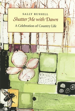 Shatter Me with Dawn