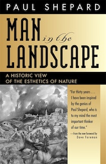 Man in the Landscape