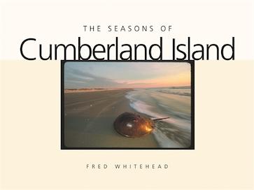 The Seasons of Cumberland Island