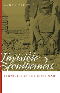 Invisible Southerners