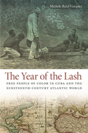 The Year of the Lash