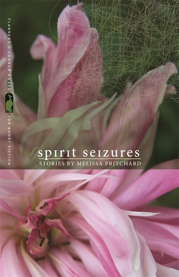 Spirit Seizures