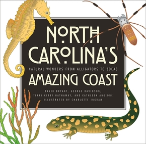 North Carolina's Amazing Coast