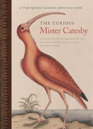 The Curious Mister Catesby