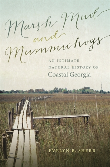 Marsh Mud and Mummichogs