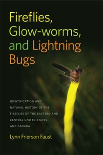 Fireflies, Glow-worms, and Lightning Bugs