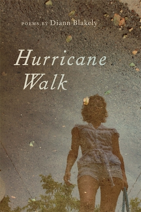 Hurricane Walk
