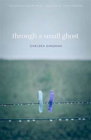 Through a Small Ghost