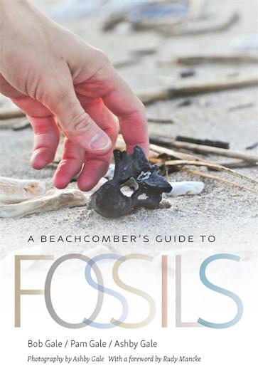 A Beachcomber