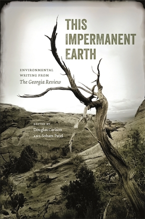 This Impermanent Earth